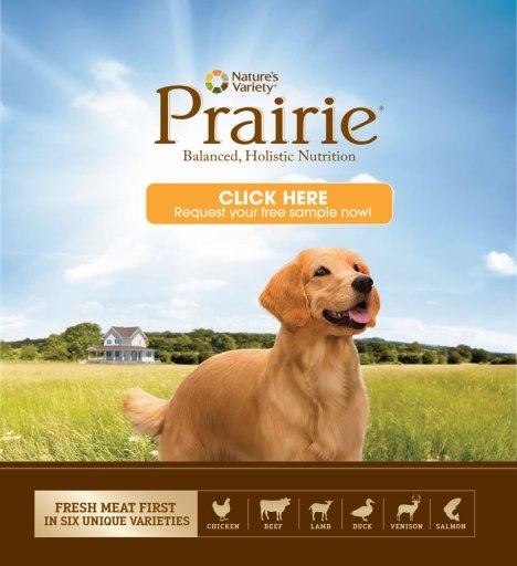 free prairie dog food sample