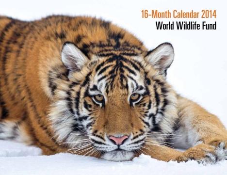 free 2014 wwf calendar
