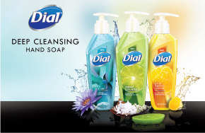 Purex Dial Hand Soap